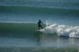 karen surfing